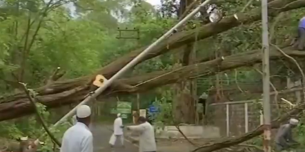 印度.png